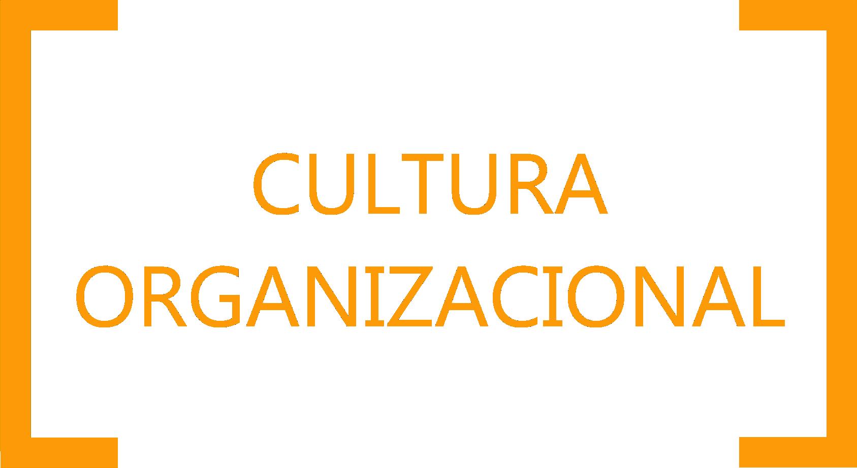 CULTURA ORGANIZCIONAL